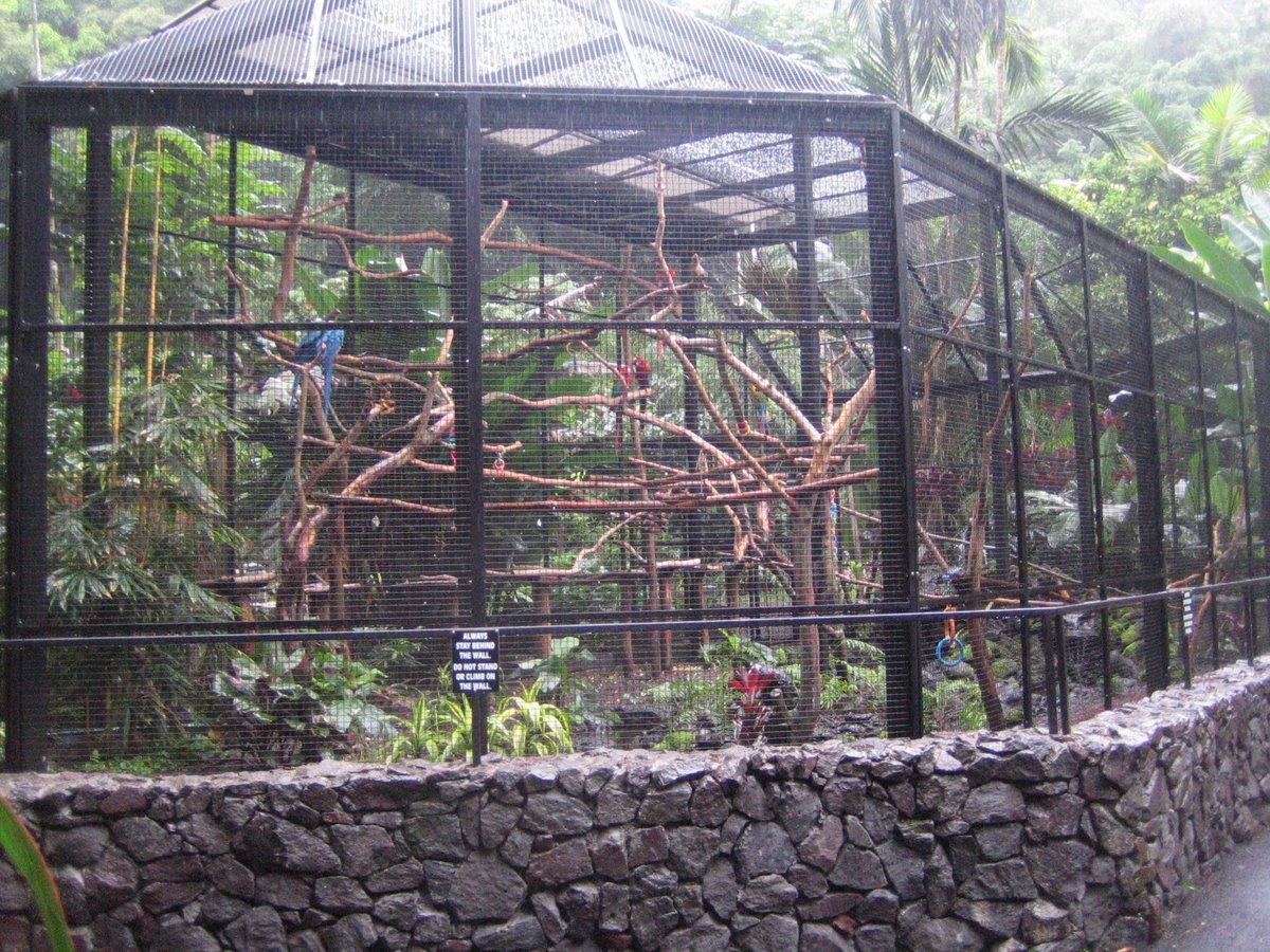 Hawaii tropical botanical garden for Garden cage